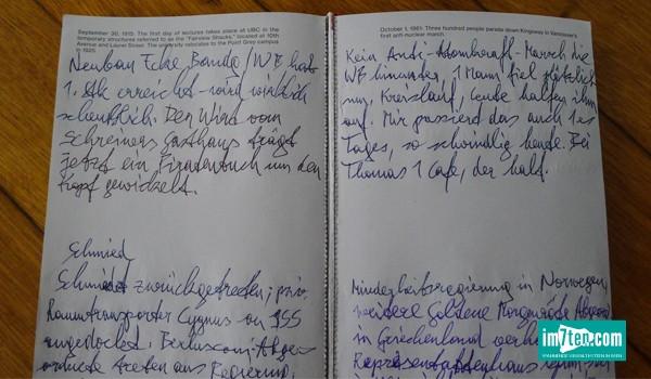 Tagebuch Franz Blaas