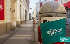 im7ten Logo