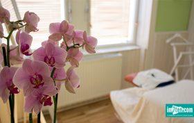 Massageinstitut Wohlergehen