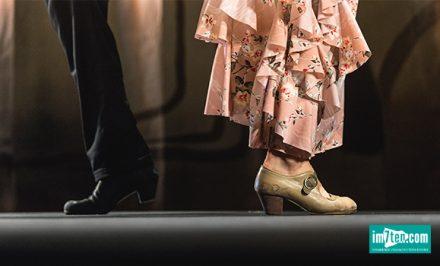 tanzen tanzstudio tanzkurs neubau wien 1070